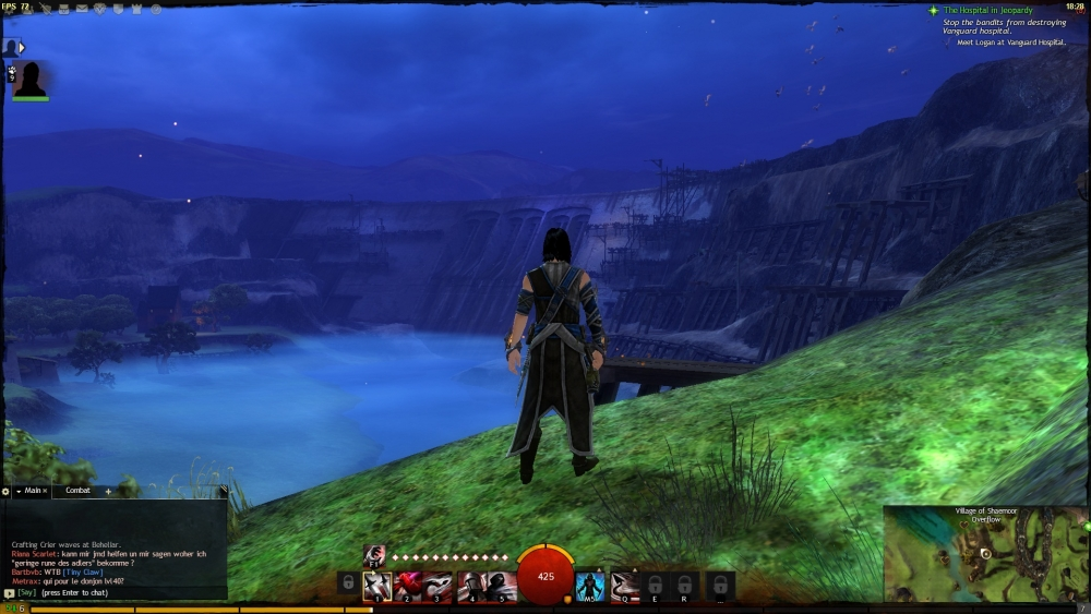 Guild Wars 2 - Screenshot - #11