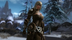Guild Wars 2 obraz #11213